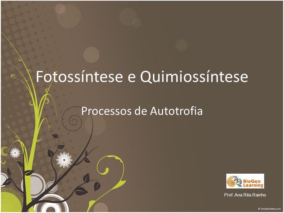 Fotossíntese e Quimiossíntese Processos de Autotrofia Prof. Ana Rita Rainho