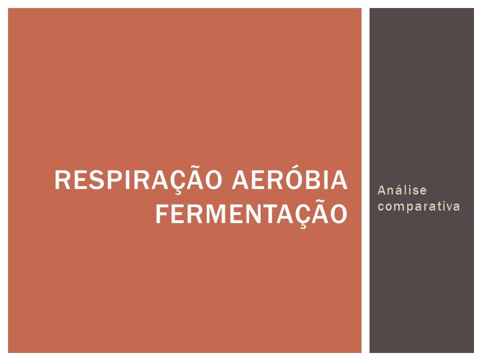 Análise comparativa RESPIRAÇÃO AERÓBIA FERMENTAÇÃO