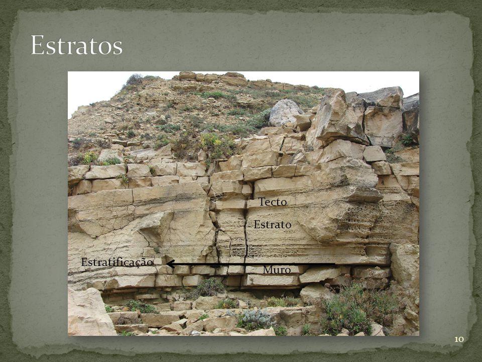 Estrato Tecto Muro Estratificação 10