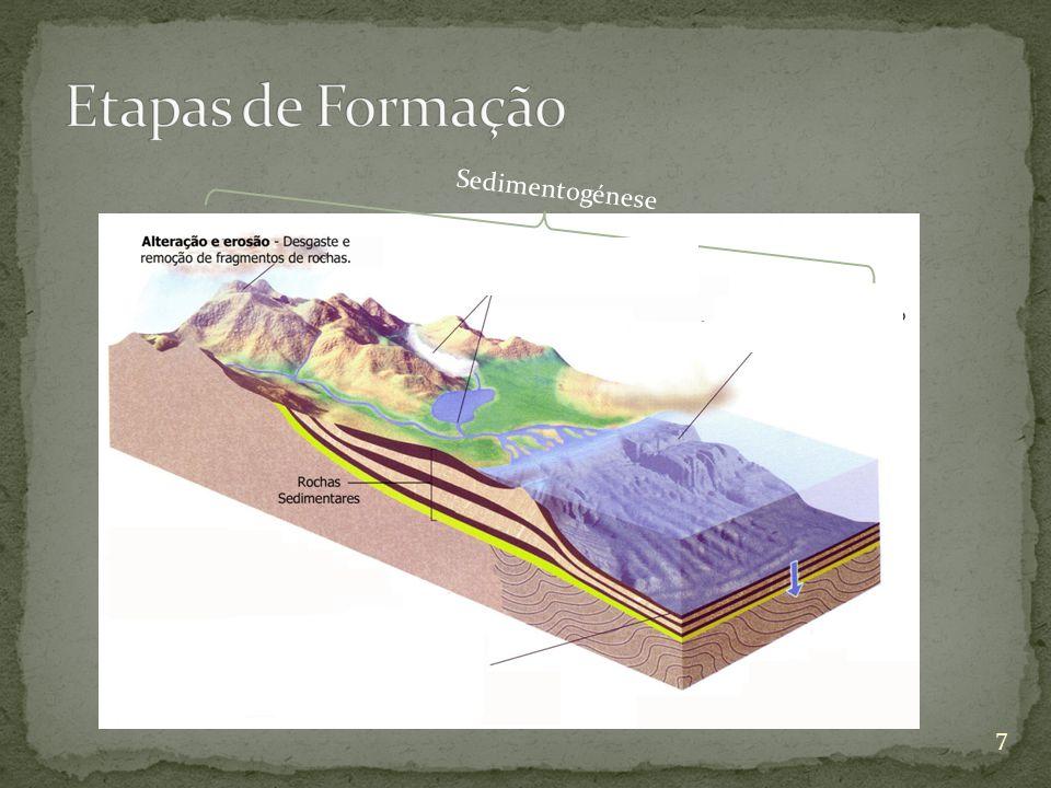 Compactação: diminuição de volume devido ao peso dos sedimentos.