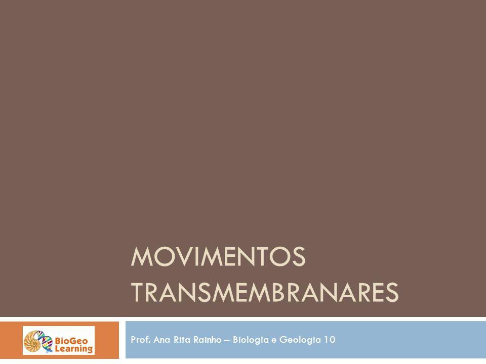 MOVIMENTOS TRANSMEMBRANARES Prof. Ana Rita Rainho – Biologia e Geologia 10