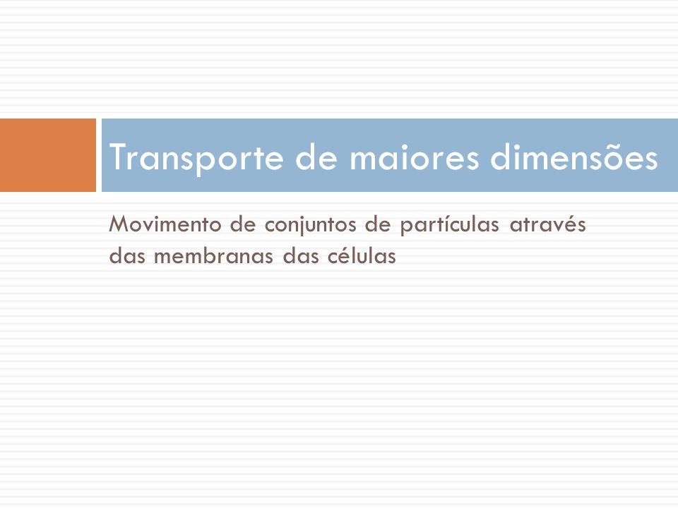 Movimento de conjuntos de partículas através das membranas das células Transporte de maiores dimensões