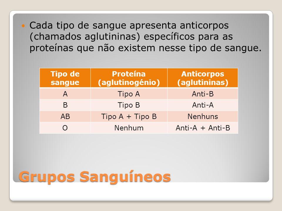 Grupos Sanguíneos Cada tipo de sangue apresenta anticorpos (chamados aglutininas) específicos para as proteínas que não existem nesse tipo de sangue.