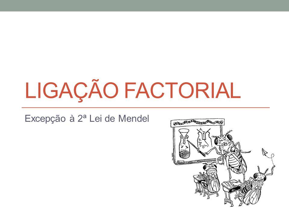 LIGAÇÃO FACTORIAL Excepção à 2ª Lei de Mendel