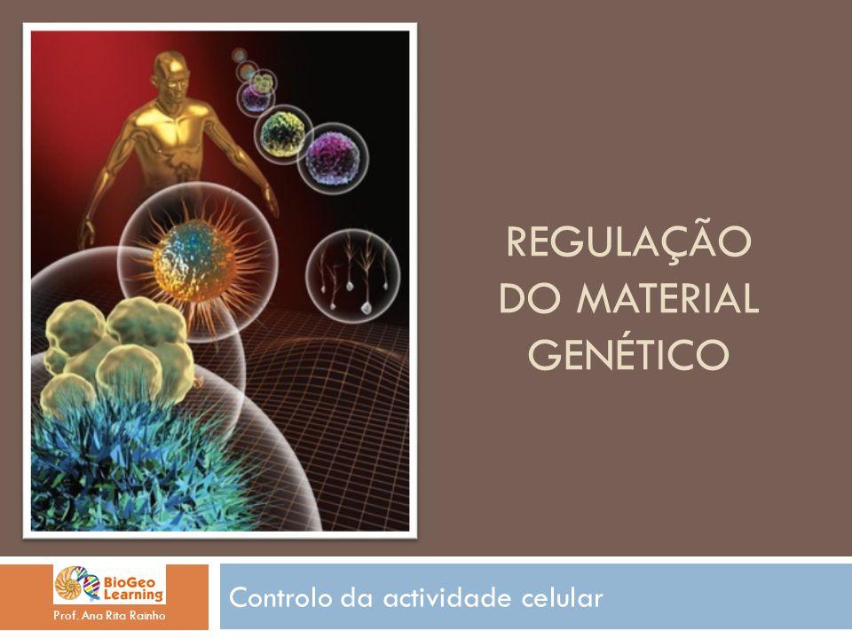 REGULAÇÃO DO MATERIAL GENÉTICO Controlo da actividade celular Prof. Ana Rita Rainho