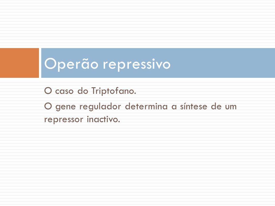 O caso do Triptofano. O gene regulador determina a síntese de um repressor inactivo. Operão repressivo