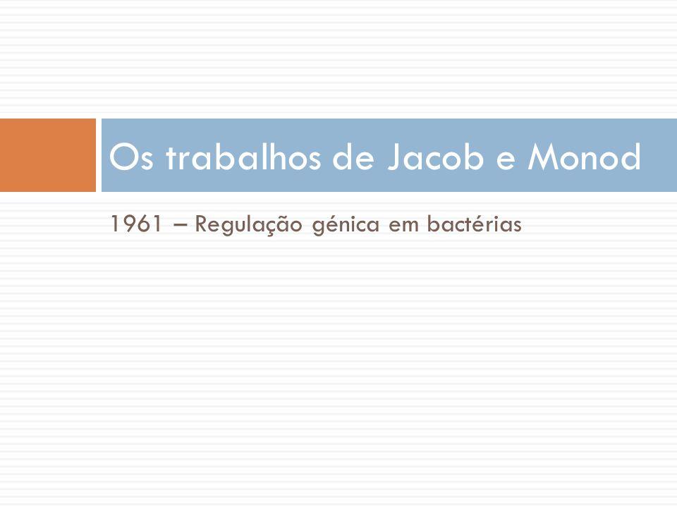 1961 – Regulação génica em bactérias Os trabalhos de Jacob e Monod