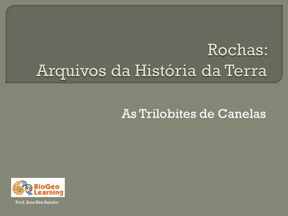 As Trilobites de Canelas Prof. Ana Rita Rainho