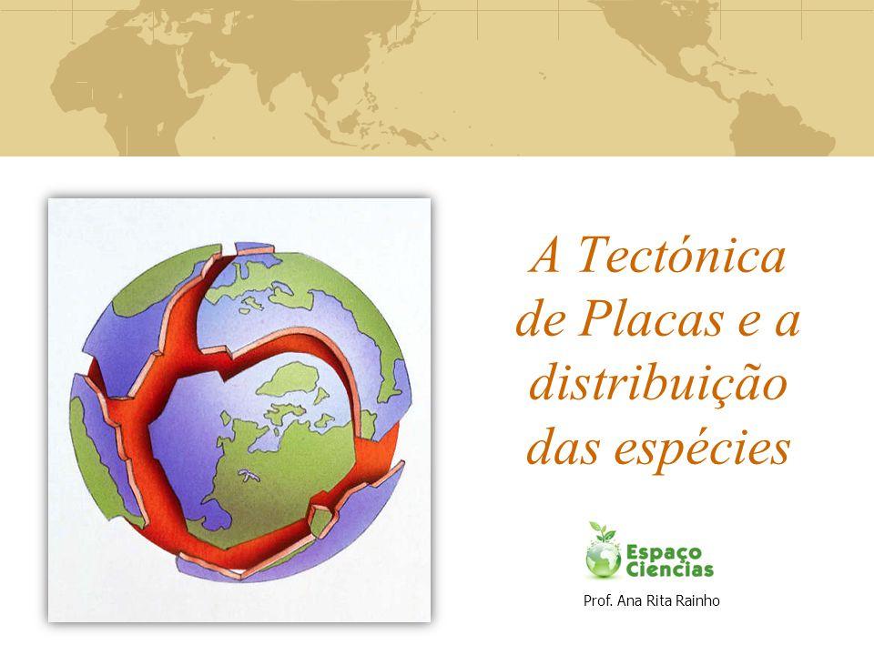 A Tectónica de Placas e a distribuição das espécies Prof. Ana Rita Rainho