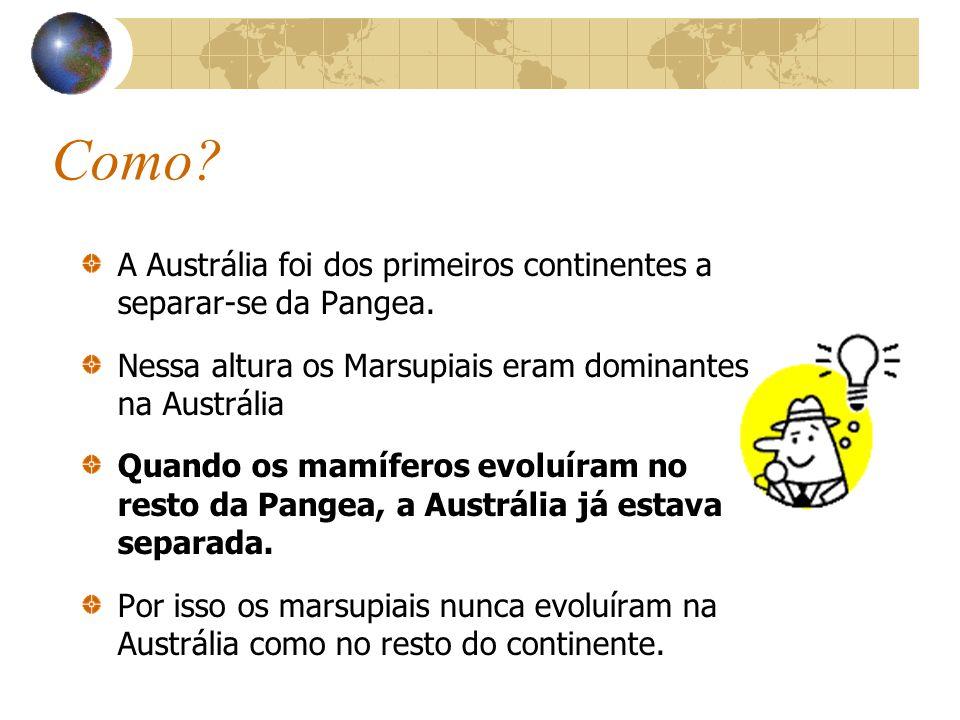 Como.A Austrália foi dos primeiros continentes a separar-se da Pangea.