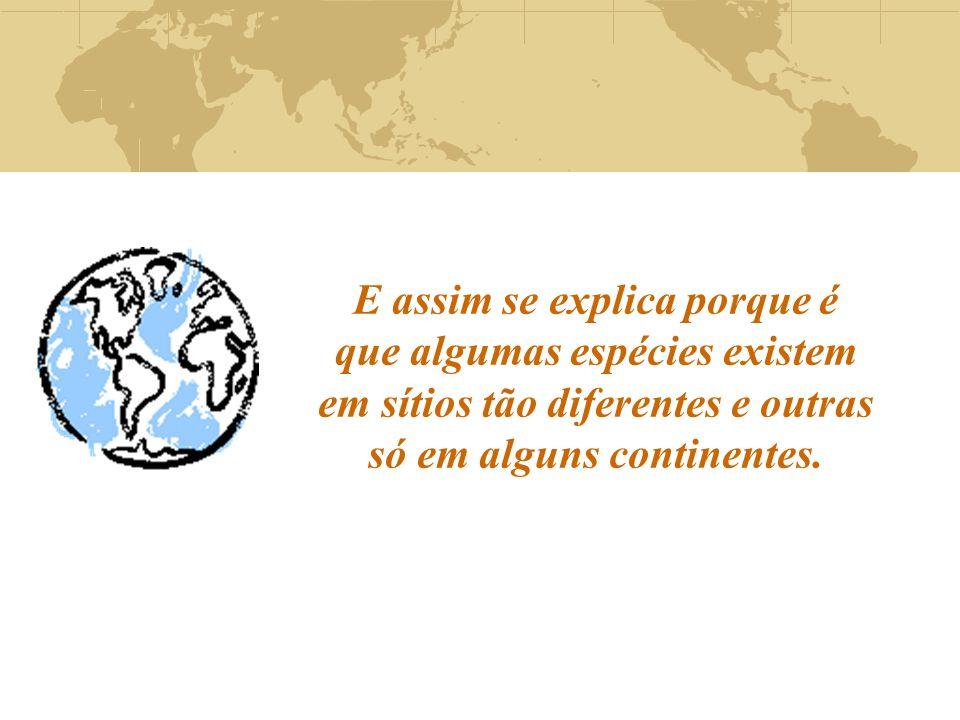 E assim se explica porque é que algumas espécies existem em sítios tão diferentes e outras só em alguns continentes.