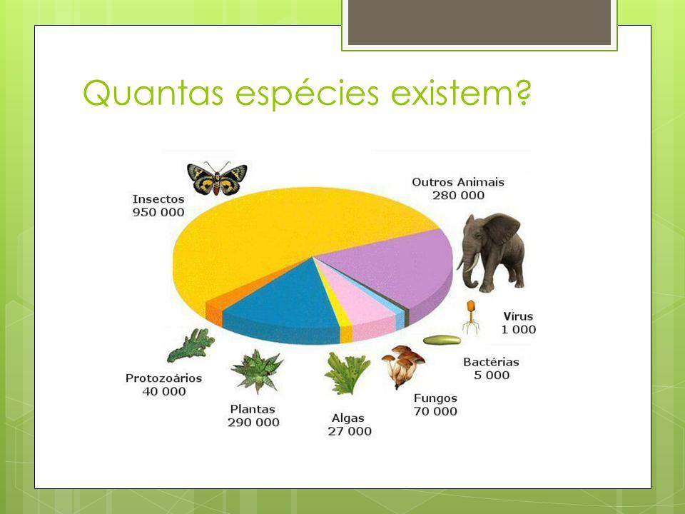 Quantas espécies existem?