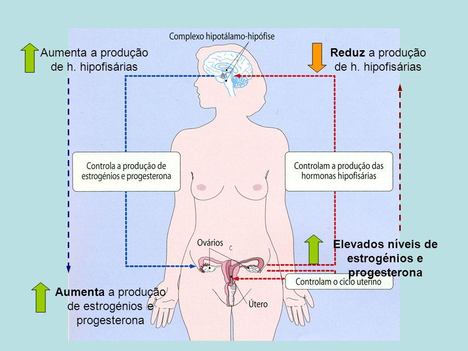 Elevados níveis de estrogénios e progesterona Reduz a produção de h. hipofisárias Aumenta a produção de h. hipofisárias Aumenta a produção de estrogén