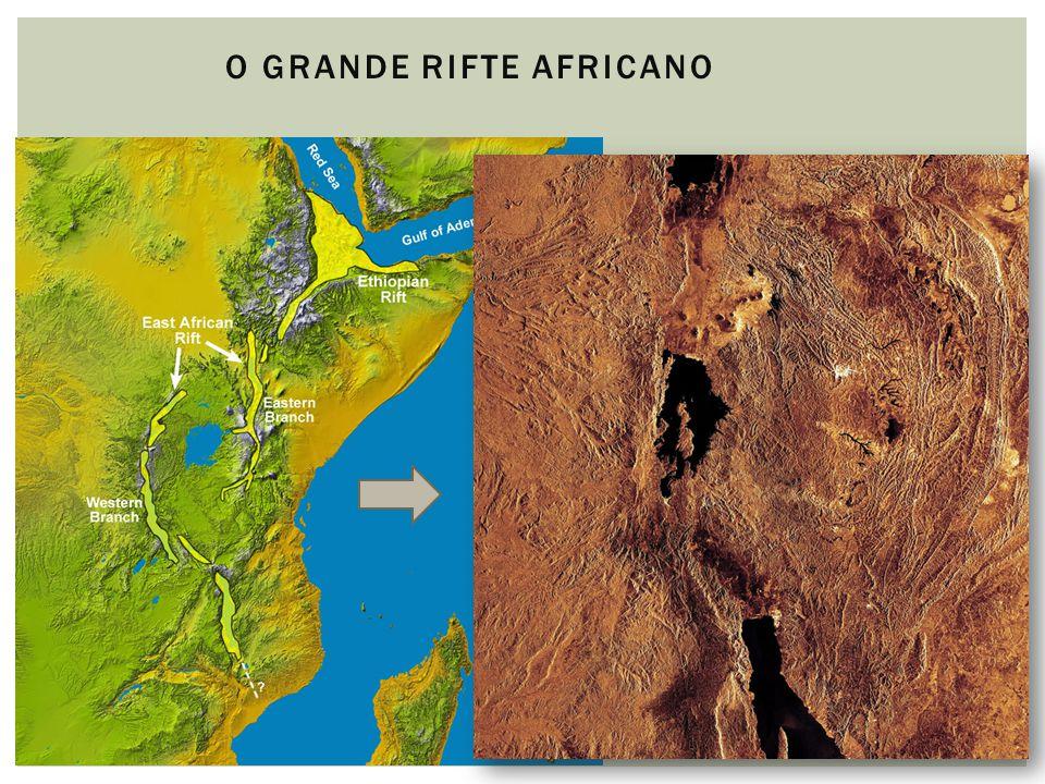 12 O GRANDE RIFTE AFRICANO