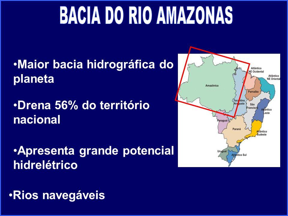 Apresenta grande potencial hidrelétrico Drena 56% do território nacional Maior bacia hidrográfica do planeta Rios navegáveis