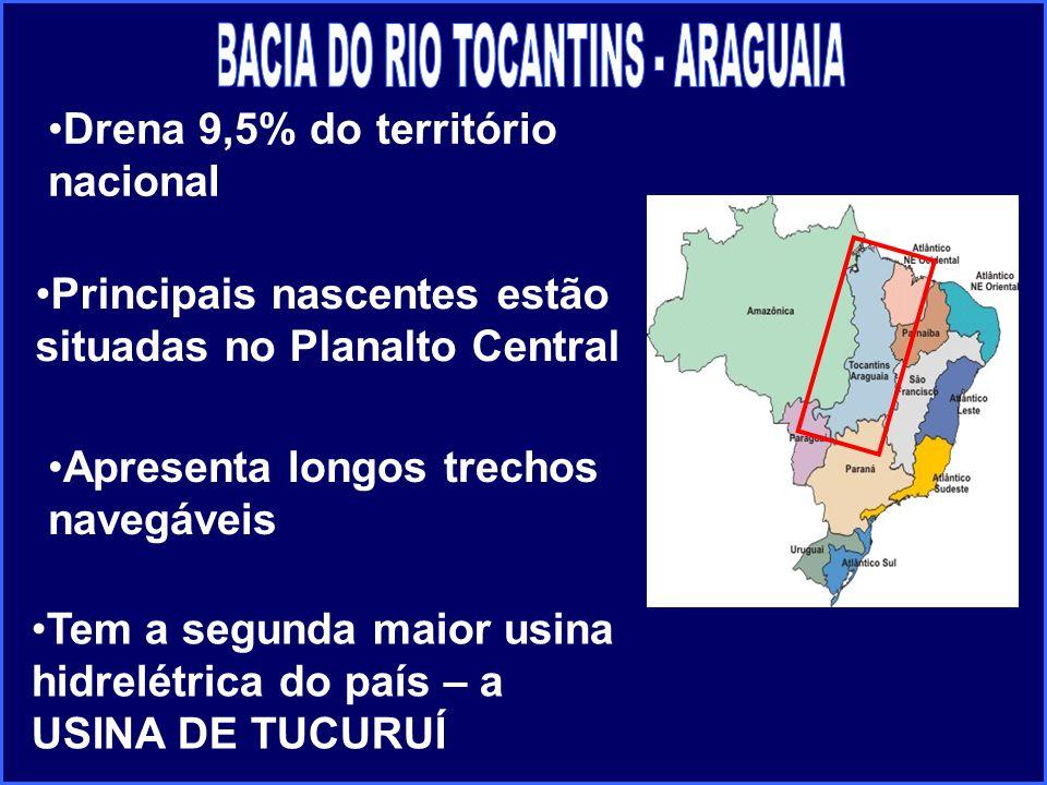 Apresenta longos trechos navegáveis Drena 9,5% do território nacional Principais nascentes estão situadas no Planalto Central Tem a segunda maior usin