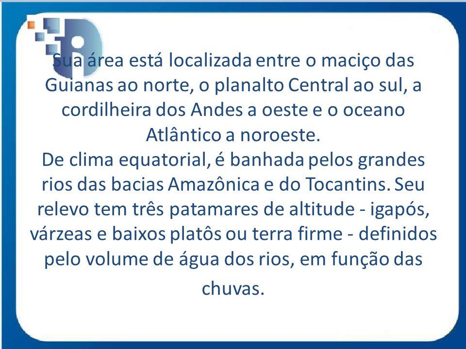 Sua área está localizada entre o maciço das Guianas ao norte, o planalto Central ao sul, a cordilheira dos Andes a oeste e o oceano Atlântico a noroes