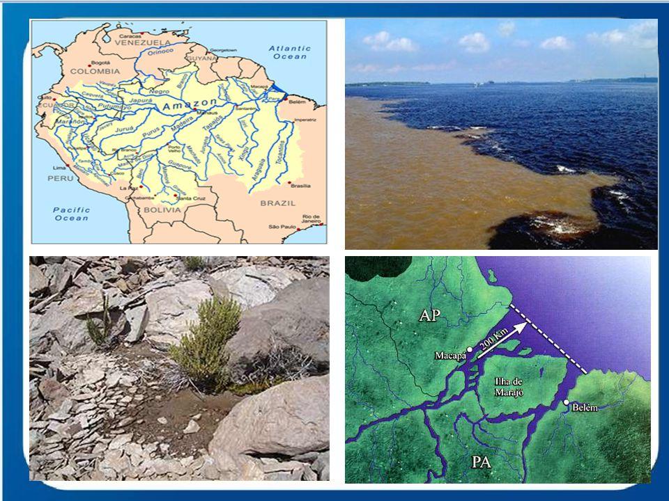 Amazônia Legal Região compreendida pela totalidade dos estados do Acre, do Amapá, de Amazonas, do Pará, de Rondônia e de Roraima e parte dos estados do Mato Grosso, de Tocantins e do Maranhão.
