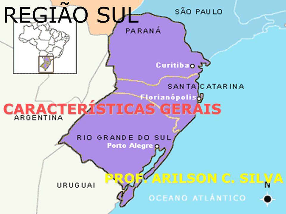 Área total: 577.214 km² Densidade demográfica (2000): 43,46 hab/km² Maiores cidades (Habitantes/2009): Curitiba (1.851.215); Porto Alegre (1.436.123); Londrina-PR (510.707); Joinville- SC (497.331); Caxias do Sul-RS (410.166); Florianópolis (408.161); Pelotas-RS (345.181); Maringá-PR (335.511); Foz do Iguaçu-PR (325.137); Canoas-RS (332.056); Ponta Grossa-PR (314.681); Blumenau-SC (299.416)