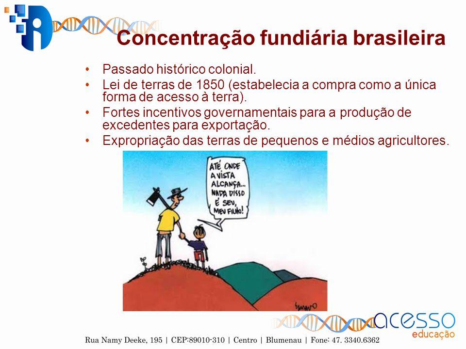 Concentração fundiária brasileira Passado histórico colonial. Lei de terras de 1850 (estabelecia a compra como a única forma de acesso à terra). Forte