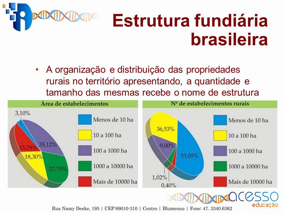 Estrutura fundiária brasileira A organização e distribuição das propriedades rurais no território apresentando, a quantidade e tamanho das mesmas rece