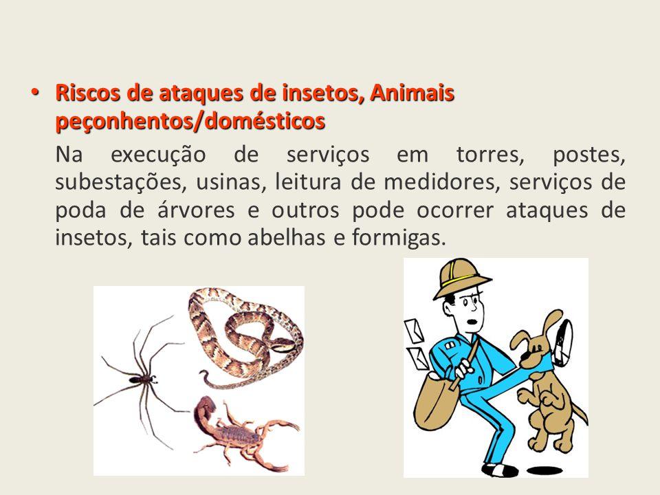 Riscos de ataques de insetos, Animais peçonhentos/domésticos Riscos de ataques de insetos, Animais peçonhentos/domésticos Na execução de serviços em t