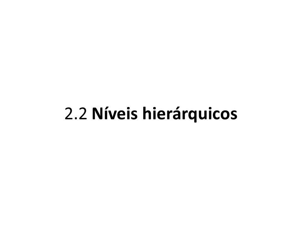 2.2 Níveis hierárquicos