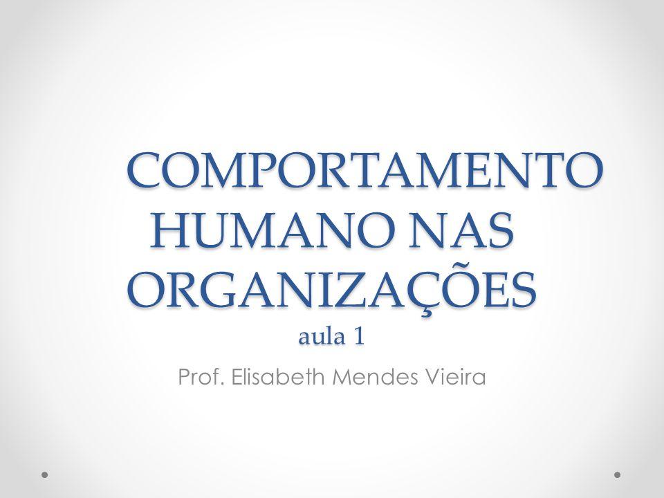 COMPORTAMENTO HUMANO NAS ORGANIZAÇÕES aula 1 Prof. Elisabeth Mendes Vieira