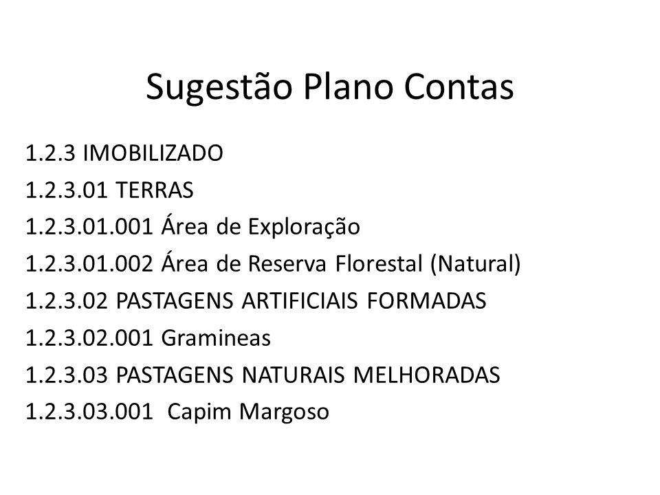 Sugestão Plano Contas 1.2.3 IMOBILIZADO 1.2.3.01 TERRAS 1.2.3.01.001 Área de Exploração 1.2.3.01.002 Área de Reserva Florestal (Natural) 1.2.3.02 PAST