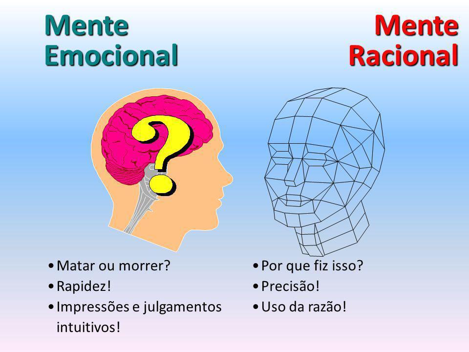 Características negativas - razão Despreocupação em conhecer as próprias emoções e sentimentos Não reconhecimento da importância da autocrítica e do autocontrole.
