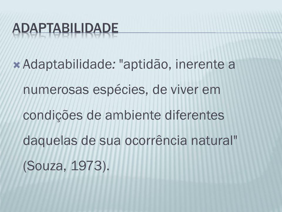 Adaptabilidade: