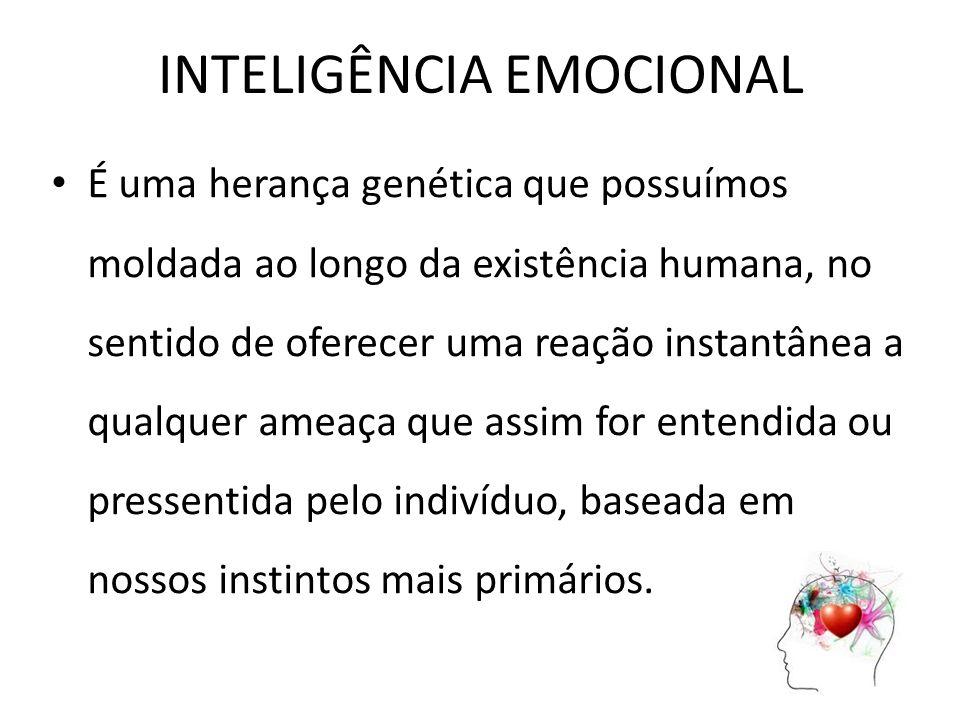 INTELIGÊNCIA RACIONAL A inteligência racional utiliza à lógica, o pensamento coordenado para tomar decisões.