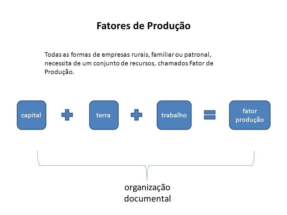 Fatores de Produção Todas as formas de empresas rurais, familiar ou patronal, necessita de um conjunto de recursos, chamados Fator de Produção. capita