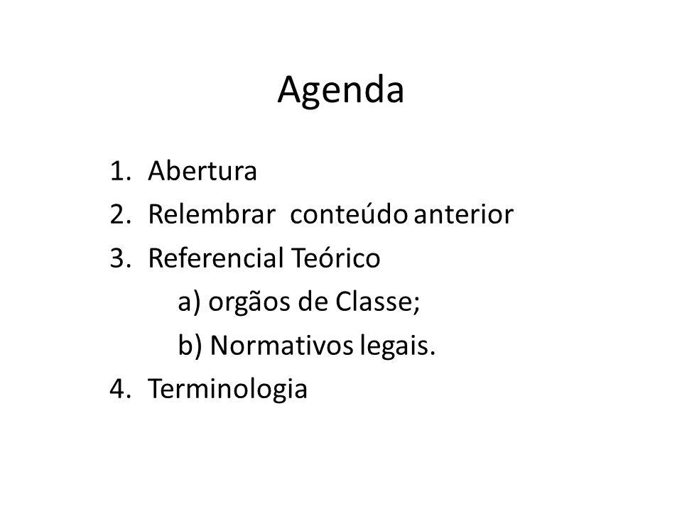 Agenda 1.Abertura 2.Relembrar conteúdo anterior 3.Referencial Teórico a) orgãos de Classe; b) Normativos legais.