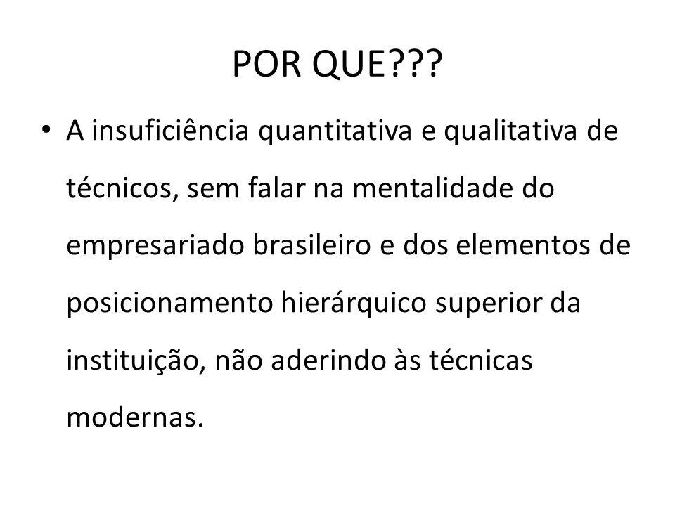POR QUE??? A insuficiência quantitativa e qualitativa de técnicos, sem falar na mentalidade do empresariado brasileiro e dos elementos de posicionamen