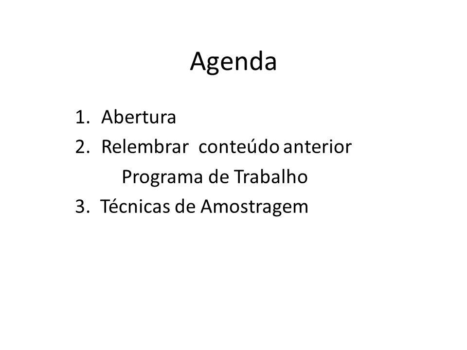 Agenda 1.Abertura 2.Relembrar conteúdo anterior Programa de Trabalho 3. Técnicas de Amostragem