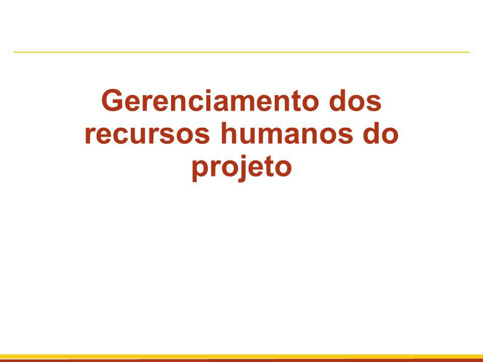 Gerenciamento dos recursos humanos Inclui os processos que organizam e gerenciam a equipe do projeto A equipe do projeto são as pessoas com papéis e responsabilidades designadas para a conclusão do projeto.