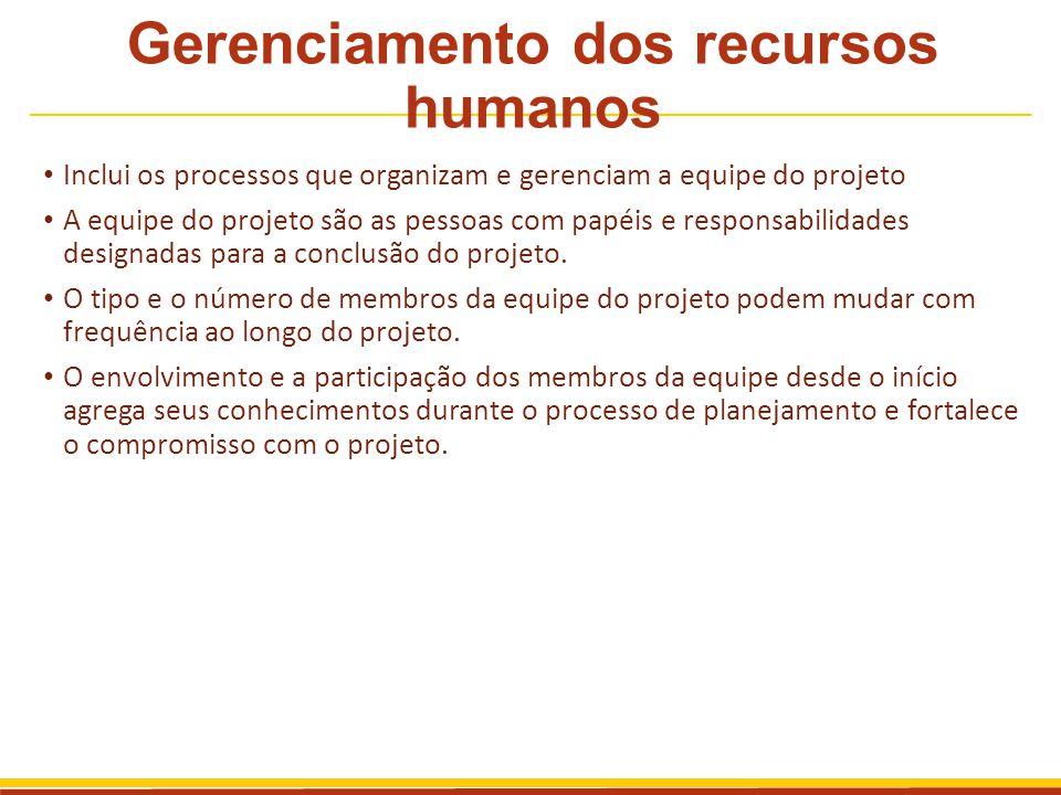 Gerenciamento dos recursos humanos Inclui os processos que organizam e gerenciam a equipe do projeto A equipe do projeto são as pessoas com papéis e r