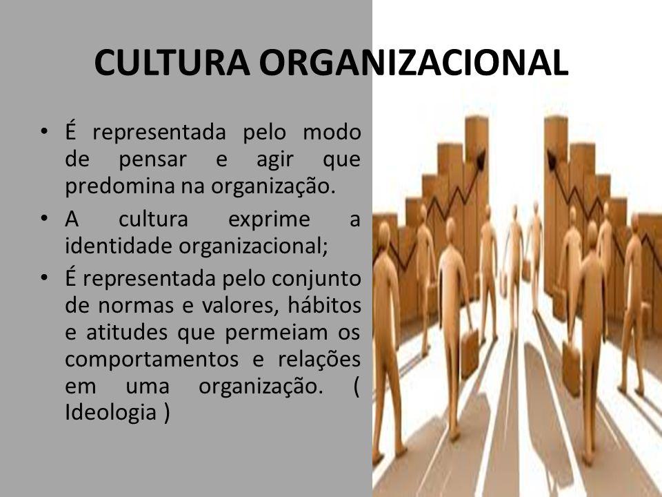 CULTURA ORGANIZACIONAL É representada pelo modo de pensar e agir que predomina na organização. A cultura exprime a identidade organizacional; É repres