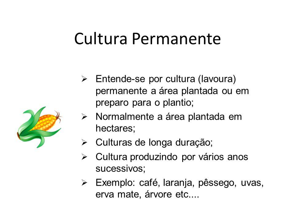 Cultura Permanente Entende-se por cultura (lavoura) permanente a área plantada ou em preparo para o plantio; Normalmente a área plantada em hectares;