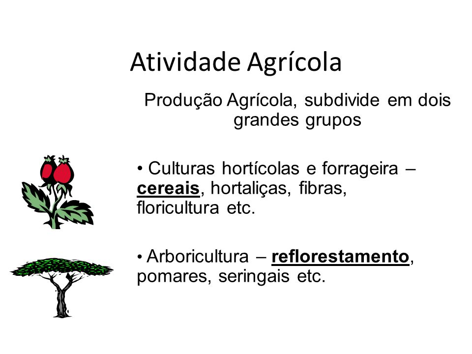 Atividade Agrícola Produção Agrícola, subdivide em dois grandes grupos Culturas hortícolas e forrageira – cereais, hortaliças, fibras, floricultura et