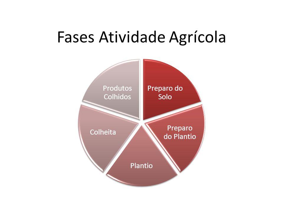 Fases Atividade Agrícola Preparo do Solo Preparo do Plantio Plantio Colheita Produtos Colhidos
