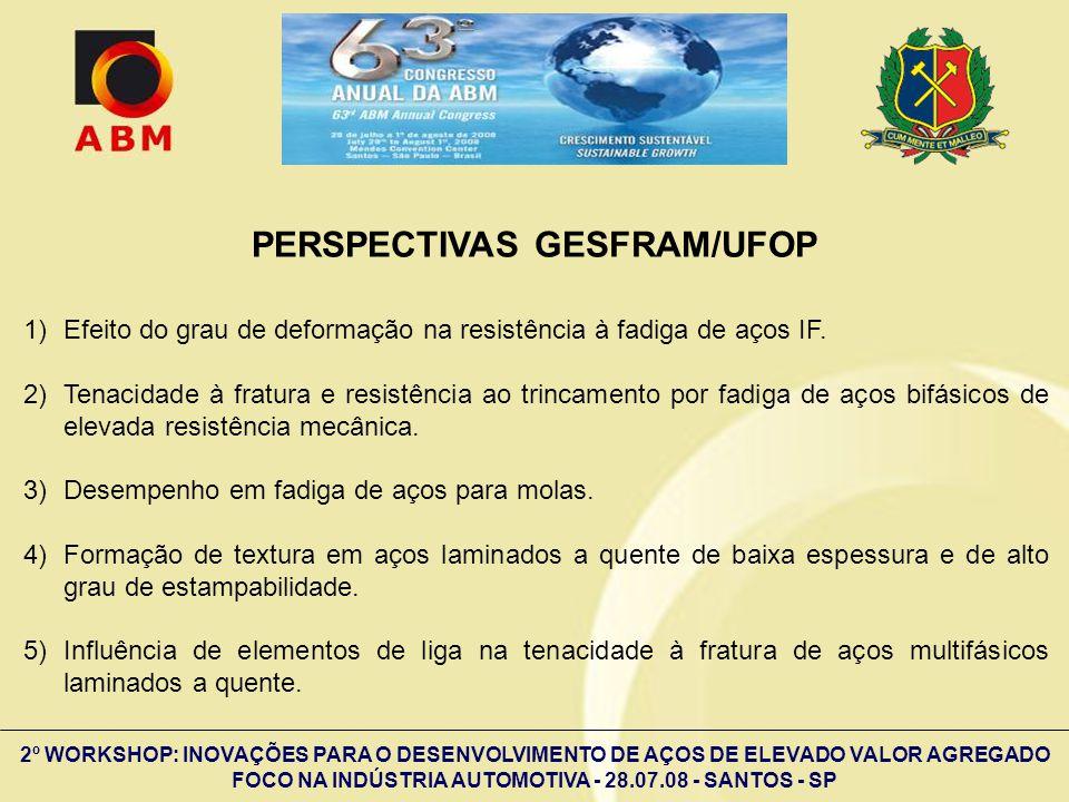 2º WORKSHOP: INOVAÇÕES PARA O DESENVOLVIMENTO DE AÇOS DE ELEVADO VALOR AGREGADO FOCO NA INDÚSTRIA AUTOMOTIVA - 28.07.08 - SANTOS - SP PERSPECTIVAS GES