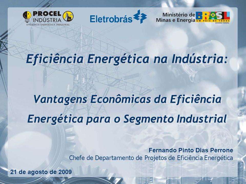 Eficiência Energética na Indústria: Vantagens Econômicas da Eficiência Energética para o Segmento Industrial Fernando Pinto Dias Perrone Chefe de Departamento de Projetos de Eficiência Energética 21 de agosto de 2009