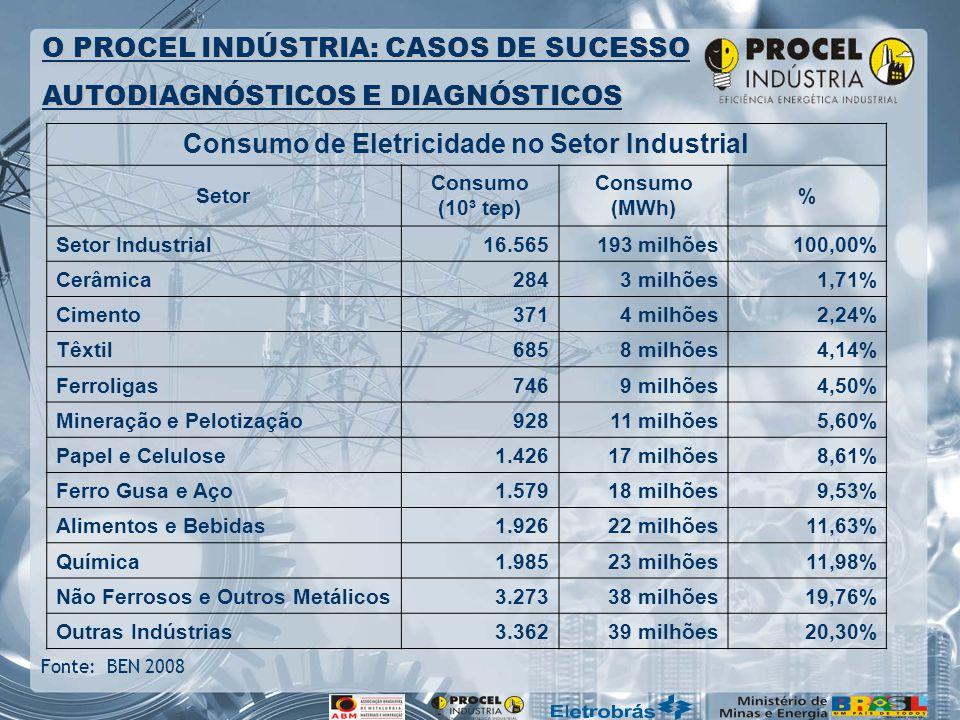O PROCEL INDÚSTRIA: CASOS DE SUCESSO AUTODIAGNÓSTICOS E DIAGNÓSTICOS Fonte: BEN 2008 Consumo de Eletricidade no Setor Industrial Setor Consumo (10³ tep) Consumo (MWh) % Setor Industrial16.565193 milhões100,00% Cerâmica2843 milhões1,71% Cimento3714 milhões2,24% Têxtil6858 milhões4,14% Ferroligas7469 milhões4,50% Mineração e Pelotização92811 milhões5,60% Papel e Celulose1.42617 milhões8,61% Ferro Gusa e Aço1.57918 milhões9,53% Alimentos e Bebidas1.92622 milhões11,63% Química1.98523 milhões11,98% Não Ferrosos e Outros Metálicos3.27338 milhões19,76% Outras Indústrias3.36239 milhões20,30%