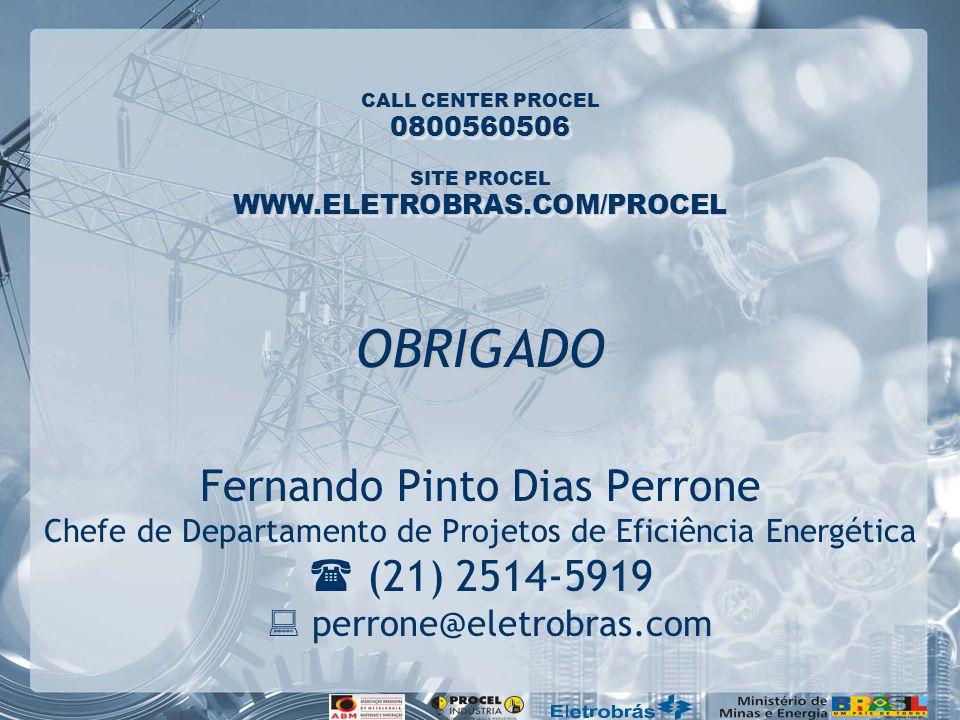 CALL CENTER PROCEL SITE PROCEL 0800560506 WWW.ELETROBRAS.COM/PROCEL Fernando Pinto Dias Perrone Chefe de Departamento de Projetos de Eficiência Energética (21) 2514-5919 perrone@eletrobras.com OBRIGADO