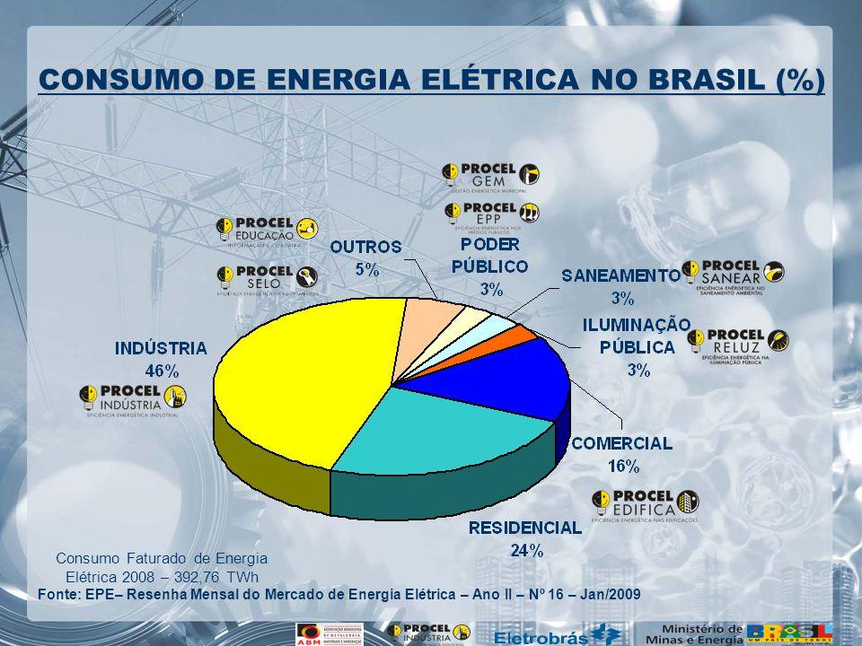 Consumo Faturado de Energia Elétrica 2008 – 392,76 TWh Fonte: EPE– Resenha Mensal do Mercado de Energia Elétrica – Ano II – Nº 16 – Jan/2009 CONSUMO DE ENERGIA ELÉTRICA NO BRASIL (%)