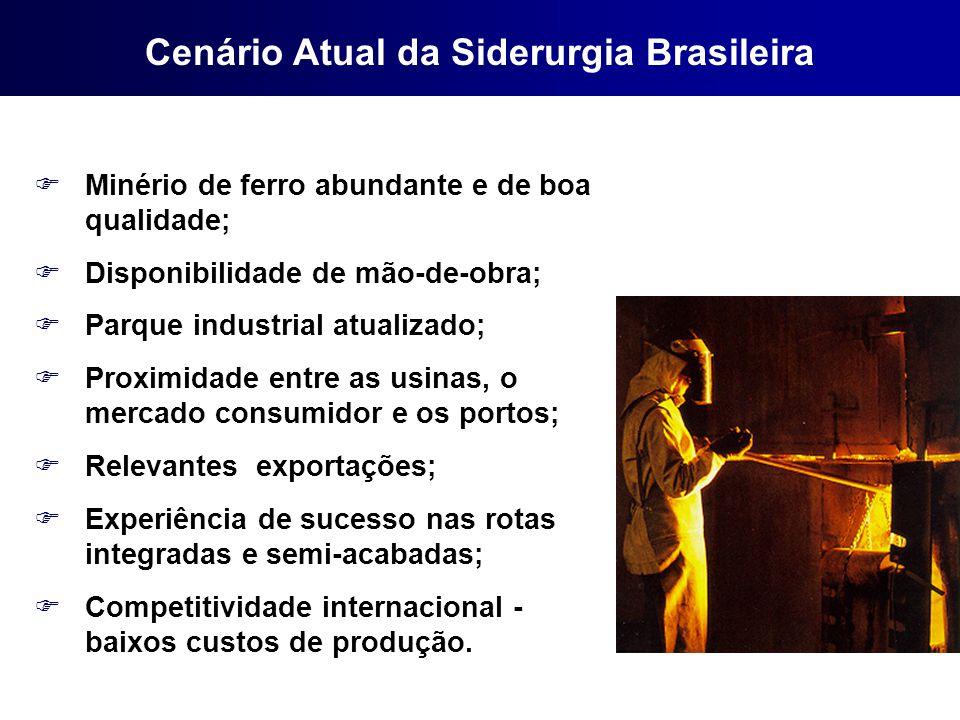 FMinério de ferro abundante e de boa qualidade; FDisponibilidade de mão-de-obra; FParque industrial atualizado; FProximidade entre as usinas, o mercad