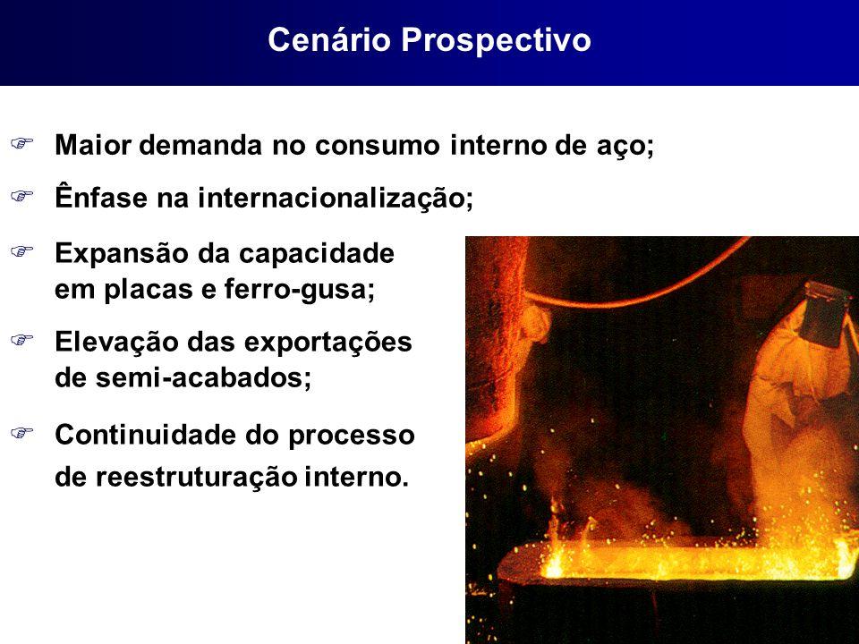 FMaior demanda no consumo interno de aço; FÊnfase na internacionalização; FExpansão da capacidade em placas e ferro-gusa; FElevação das exportações de