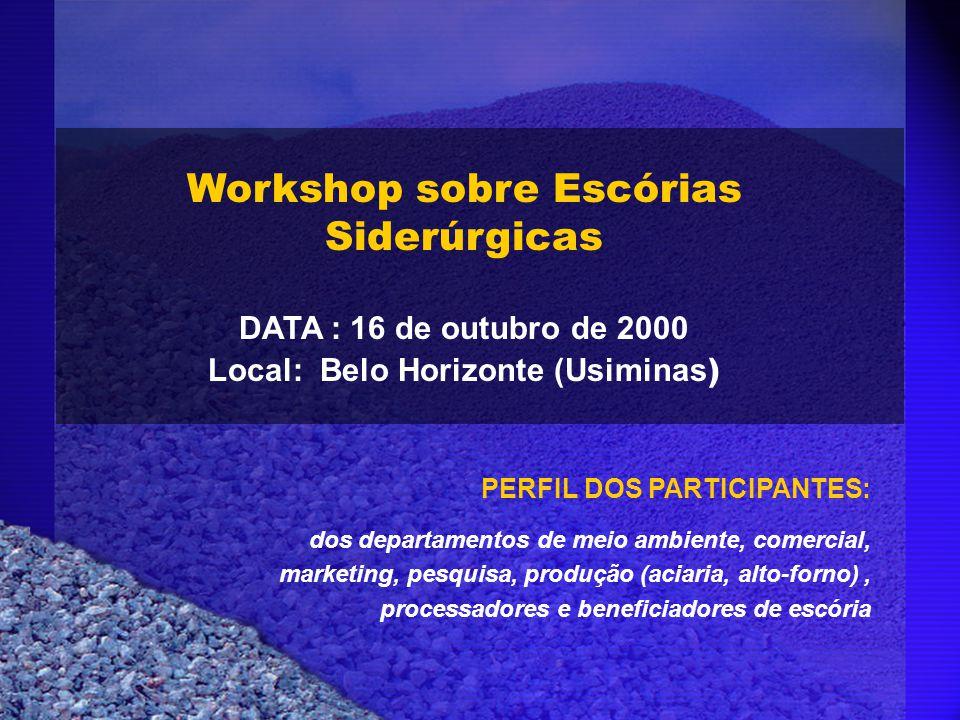Workshop sobre Escórias Siderúrgicas DATA : 16 de outubro de 2000 Local: Belo Horizonte (Usiminas ) PERFIL DOS PARTICIPANTES: dos departamentos de mei
